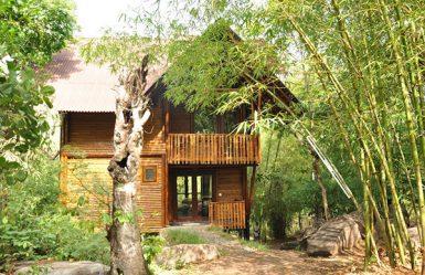 Uravu_Bamboo_Grove_Eco_Nest_1